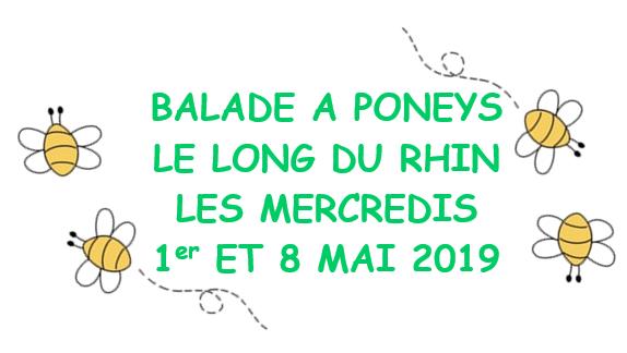 Balade à poneys les 1er et 8 mai 2019