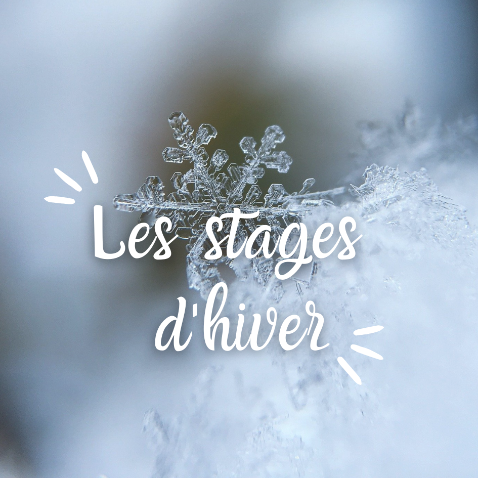 Stages d'hiver 2020